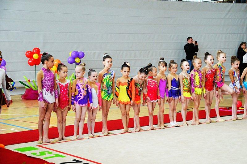 детская юношеская школа по спортивной гимнастике в городе Виблинген